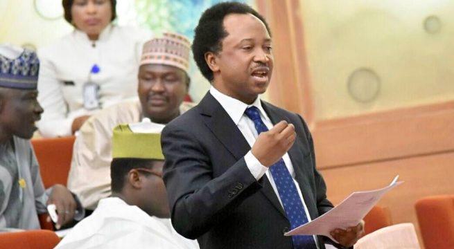 Nigeria: Senator Shehu Sani's Constituents Vow to Recall Him