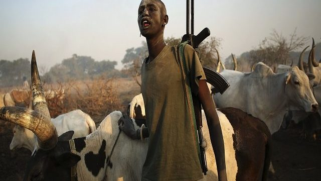 Nigeria: Fresh Attack by Armed Herdsmen Leave Eight Dead