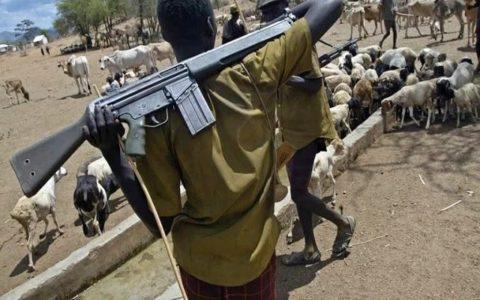 Fulani Herdsmen: About 50 Killed in Fresh Attacks at Adamawa