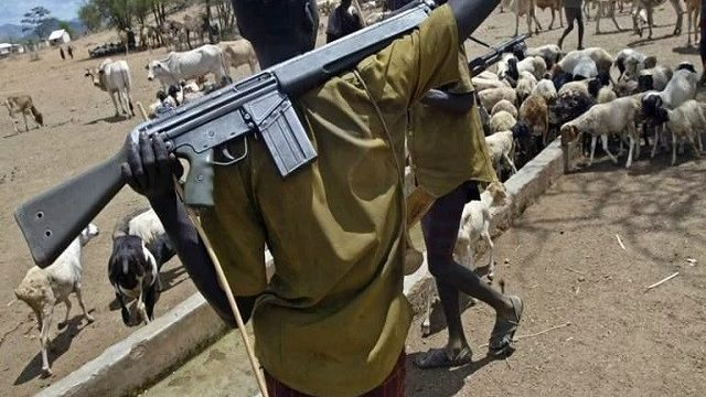 Fulani Herdsmen: About 50 Killed in Fresh Attacks at Adamawa