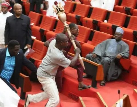 Nigeria: APC Senators Plan to Break Into Senate Champers (Video) - Onyema Chukwu
