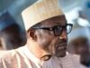 Nigeria: No Foreign Pressure on President Buhari to Drop 2nd Term Bid – Femi Adesina
