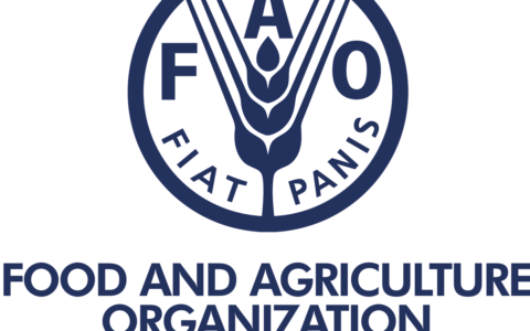 As FAO Marks World Antibiotic Awareness Week, Farmers Tasked To Boost Farm Hygiene
