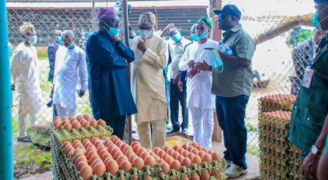 Osun Gov Seeks Private Partnership to Revamp Agric Sector