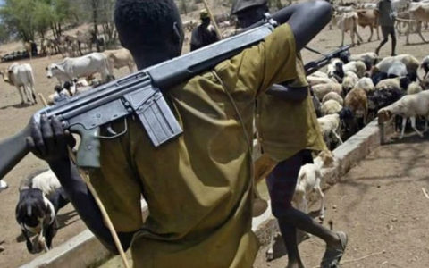 RE: Unlawful Killing, Nchatancha Community, Emene, Enugu East LGA