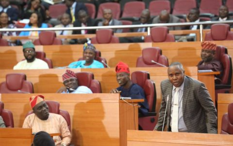 Lagos Assembly Condemns Xenophobic Attacks on Nigerians