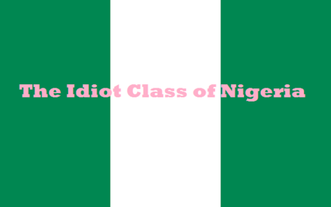 The Idiot Class of Nigeria