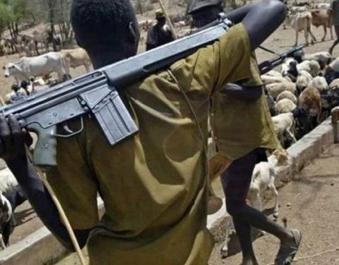 Opinion: Should I Boycott Nigerian Beef?