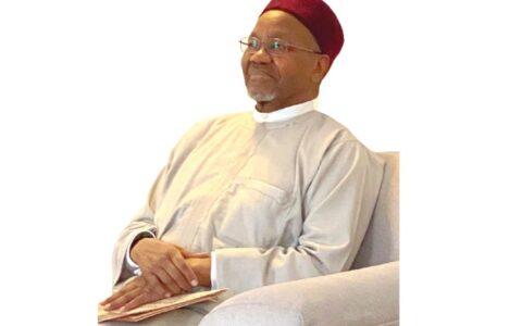 Ohanaeze, Afenifere Chide Daura Over Comment on 2023 Presidency