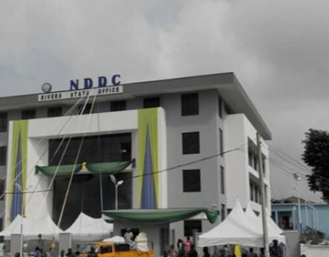 NDDC-gate: Another Gory Exposure of An Ailing Nation
