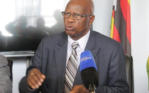 Protest in Zimbabwe: US Summons Zanu-PF Spokesperson Over Comments