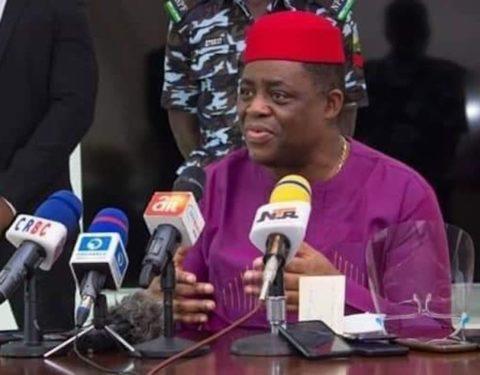 Fani-Kayode Apologises for Calling a Journalist 'Stupid'