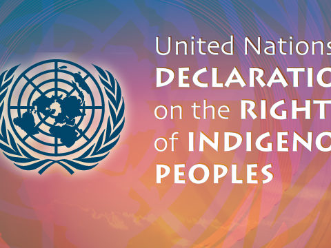Nigeria: Indigenous People and their Right to Self-Determination
