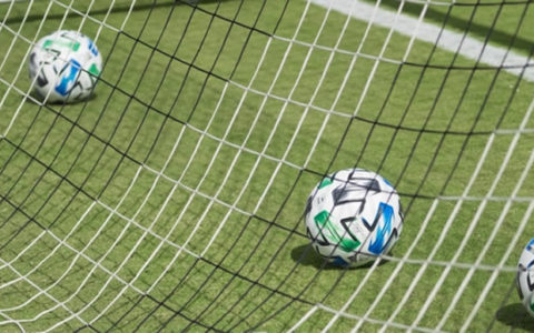 Crown FC Player Collapses, Dies During Friendly Match