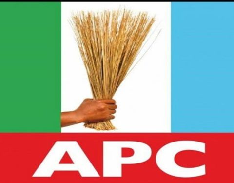 It Takes More Than Social Media Poll to Win Elections, APC Replies PDP