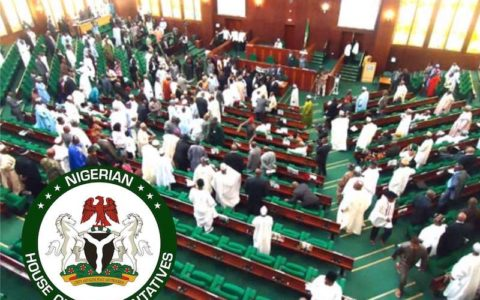 Reps Link NIN Demand for SIM Registration to #EndSARS
