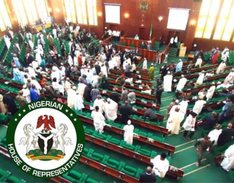 Breaking: Reps Move to Suspend FG's 774,000 Jobs Scheme