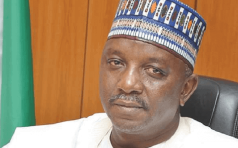 Minister of Power Directs NERC to Suspend Reviewed Electricity Tariff