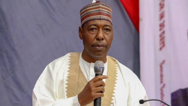 2023: Why Power Should Rotate to South – Zulum
