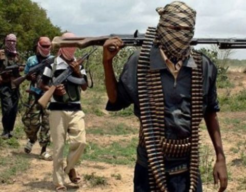 Gunmen Kidnap 300 Girls in Zamfara School
