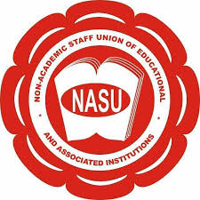 IPPIS is a Scam, Fed Govt Deceived Us - NASU Chair