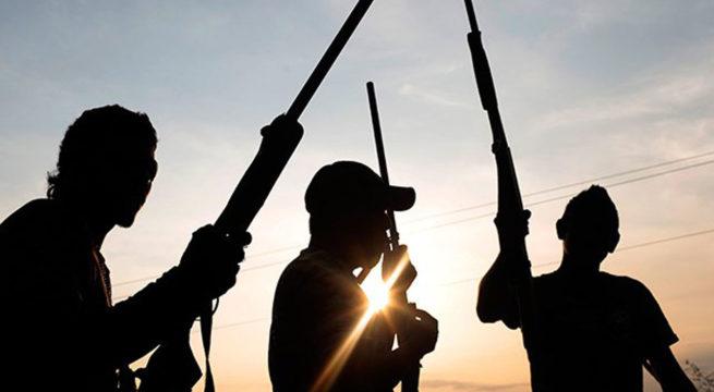 Bandits Kidnap Many Pupils, Teachers in Kaduna Primary School