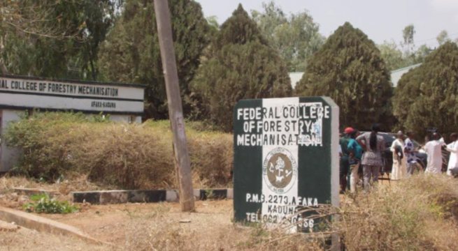 Parents of Freed Afaka Students React to Alleged Sexual Molestation of Students by Bandits