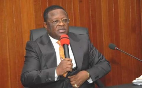 I'm Pained Each Time Bandits Are Killed – Gov Umahi