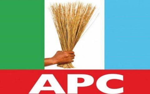 APC Represent Future of Nigeria's Democracy Says Governors