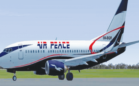 Air Peace's 12-hour Flight Delay Causes Protest At Lagos Airport