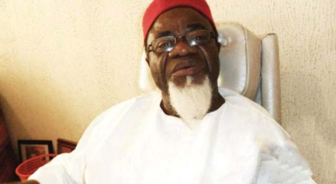 Ohanaeze Appoints Ezeife To Lead Delegation To Nnamdi Kanu's Trial
