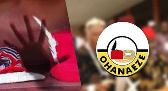 Ohanaeze Speaks Om Meeting Malami Over Kanu's Detention