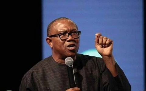 FG's GDP Growth Insignificant With Rising Poverty – Peter Obi